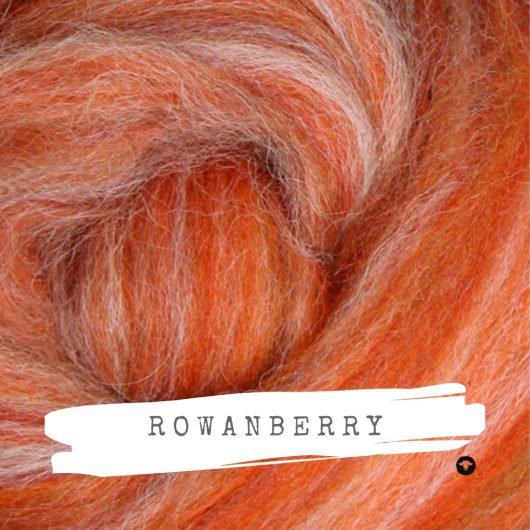 Ashford Alpaca Merino Rovings available on Wool Craft - Rowan Berry
